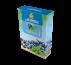 Blueberry W Mint
